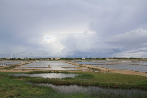 Salt drying ponds