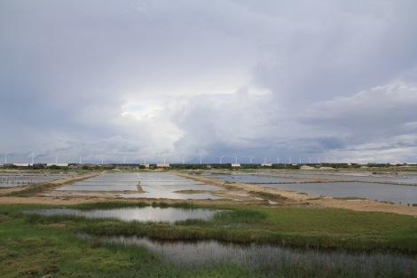 Salt drying ponds