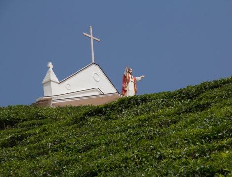 Tea Jesus