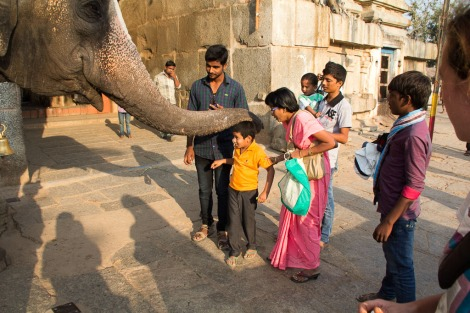 Being blessed by a temple elephant.