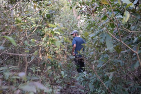 It was a little unnerving walking through thick vegetation trying to find animals...